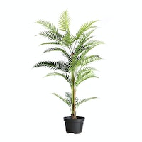 Kana Furniture Artificial Plant 2391 Kwai A3