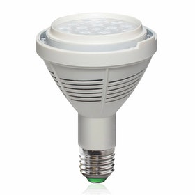 3+Projects Lampu LED Bulb PAR 30 35W 3+LSPR30356038 6000K Cool Day Light