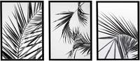 Iwallyou Wall Poster Set Black Palm Leaves