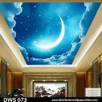 DWS 3D Wallpaper Custom - Motif Plafon/Awan/Night | DWS 073