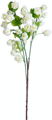 VIVERE Flower Hop Branch Long BF White 87Cm