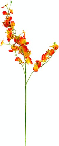 VIVERE Flower Dancing Orchid X4 BF Orange 80cm