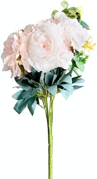 VIVERE Flower Peony Bunch X13 BF Light Peach 56cm