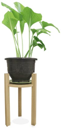 Viku Furniture Stand pot Middle